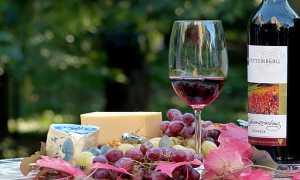 vinopoli